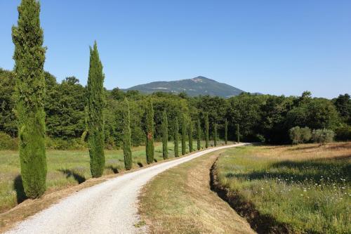 Walking: Direct surroundings