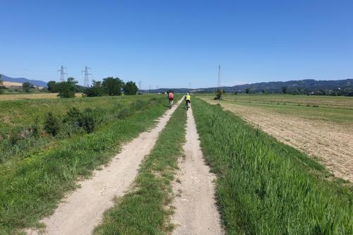Mountainbiken: directe omgeving